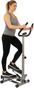 Fitness Twist Stepper Step Machine