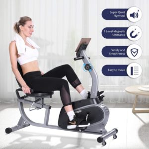 Recumbent Exercise Bike Indoor Cycling Stationary Bike