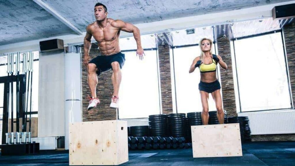 7 Best Plyo Boxes